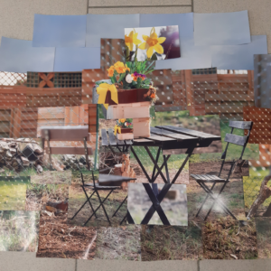 Collage6